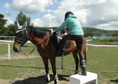oboz-konie-2014-5-0043