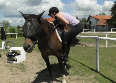 oboz-konie-2014-5-0044