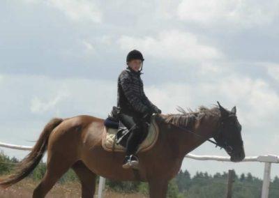 oboz-konie-2014-5-0051