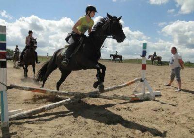 oboz-konie-2014-5-0060