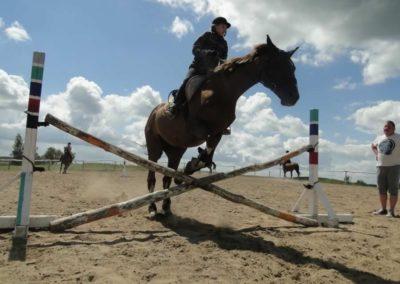 oboz-konie-2014-5-0061