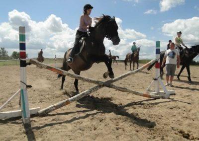 oboz-konie-2014-5-0062