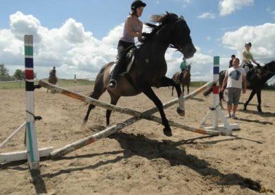 oboz-konie-2014-5-0063
