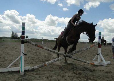 oboz-konie-2014-5-0065