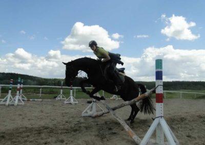 oboz-konie-2014-5-0067