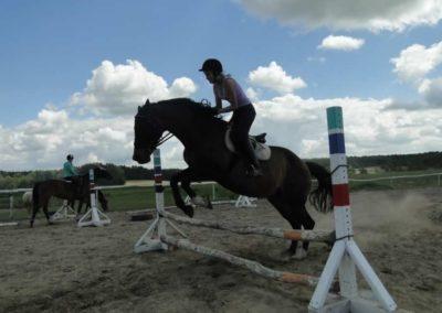 oboz-konie-2014-5-0074