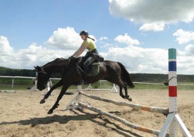 oboz-konie-2014-5-0077
