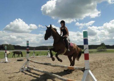 oboz-konie-2014-5-0079