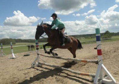 oboz-konie-2014-5-0083