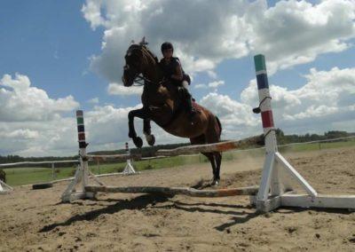 oboz-konie-2014-5-0086