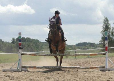 oboz-konie-2014-5-0089