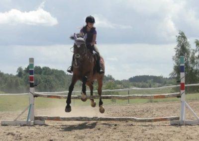 oboz-konie-2014-5-0090