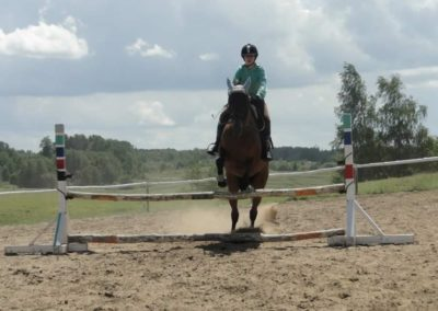 oboz-konie-2014-5-0092