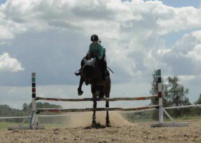 oboz-konie-2014-5-0093