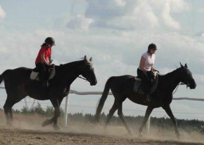 oboz-konie-2014-5-0106