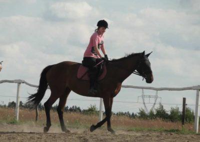 oboz-konie-2014-5-0107