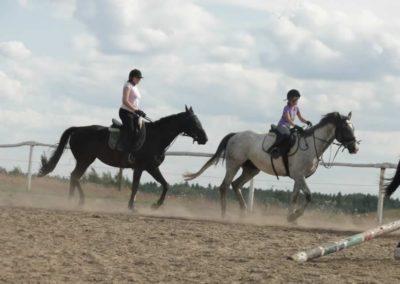 oboz-konie-2014-5-0112