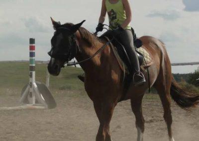 oboz-konie-2014-5-0117