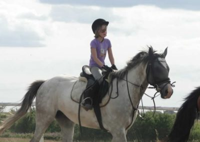 oboz-konie-2014-5-0120