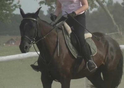 oboz-konie-2014-5-0124