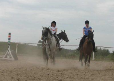 oboz-konie-2014-6-0001