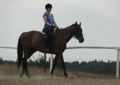 oboz-konie-2014-6-0003
