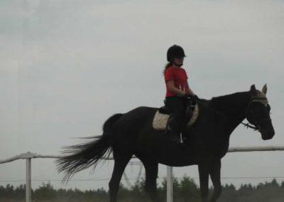 oboz-konie-2014-6-0004