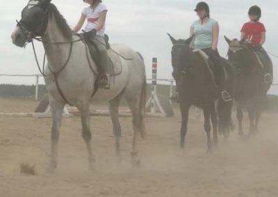 oboz-konie-2014-6-0005