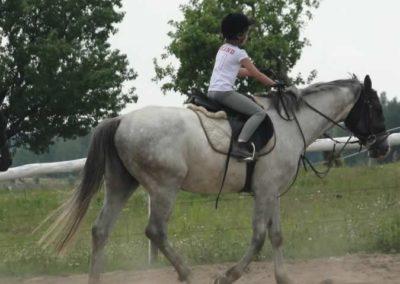 oboz-konie-2014-6-0007