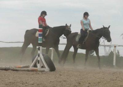 oboz-konie-2014-6-0010