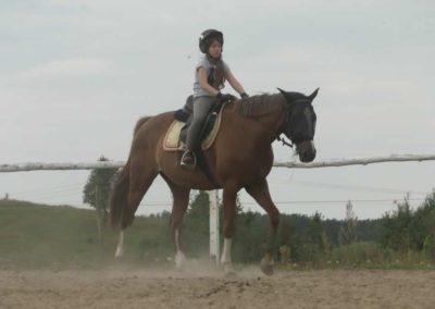 oboz-konie-2014-6-0012
