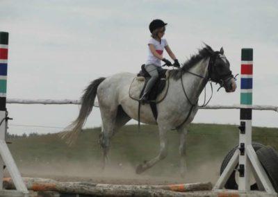 oboz-konie-2014-6-0014