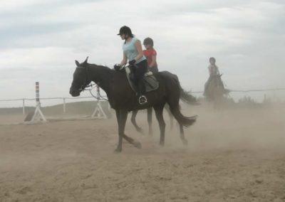 oboz-konie-2014-6-0015
