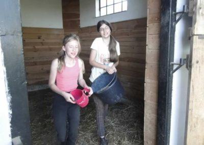 oboz-konie-2014-6-0018