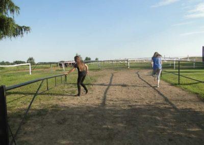 oboz-konie-2014-6-0019