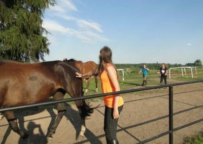 oboz-konie-2014-6-0021
