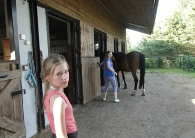 oboz-konie-2014-6-0022