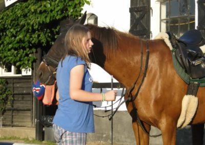 oboz-konie-2014-6-0034
