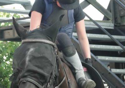 oboz-konie-2014-6-0035