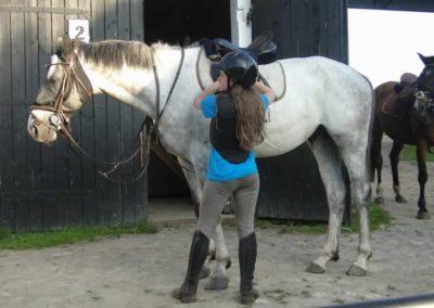 oboz-konie-2014-6-0037