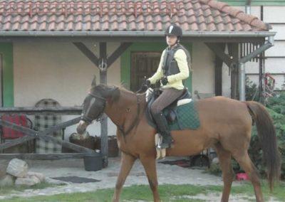 oboz-konie-2014-6-0042
