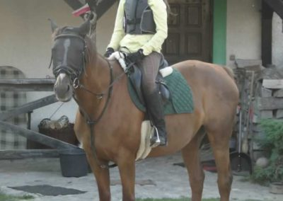 oboz-konie-2014-6-0043