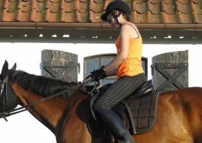 oboz-konie-2014-6-0046