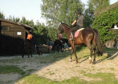 oboz-konie-2014-6-0048