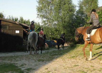 oboz-konie-2014-6-0049