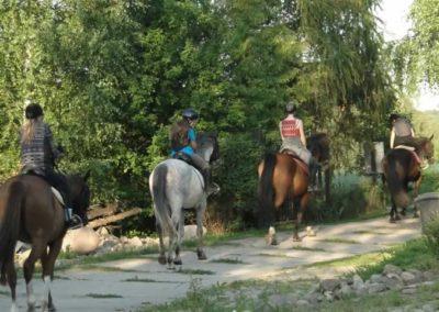 oboz-konie-2014-6-0050