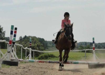 oboz-konie-2014-7-0014