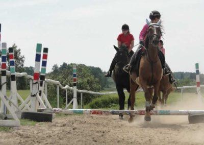 oboz-konie-2014-7-0015