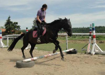 oboz-konie-2014-7-0016