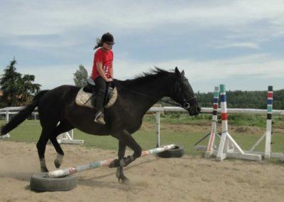 oboz-konie-2014-7-0018